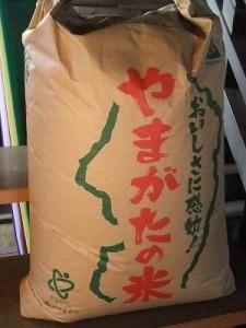 伊勢原産の粳米「キヌヒカリ」