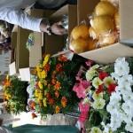 野菜・鉢花の無料配布