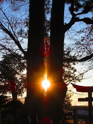 夫婦円満・良縁成就の「相生の欅」より日の出を拝む